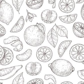 Citrus schets patroon. natuurlijke citroen oranje bladeren, limoen fruit achtergrond. vintage botanische tak, exotische plant vector naadloze textuur. fruit citroen gezond, botanisch voedsel citrus patroon