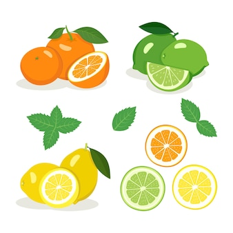 Citrusvruchten instellen. helder gele citroen, groene limoen en oranje sinaasappel met helften en partjes, muntblaadjes. heerlijk gezond tussendoortje. zomer en lente voedsel pictogrammen. vector illustratie