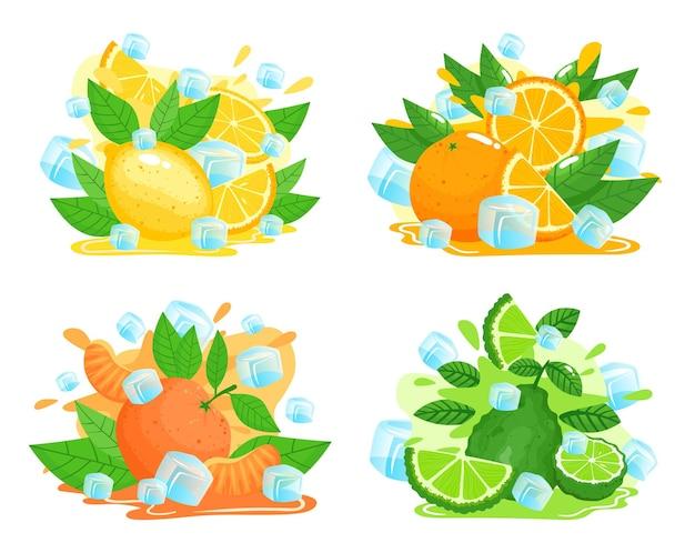 Citrusvruchten met ijsblokjes illustratie set.
