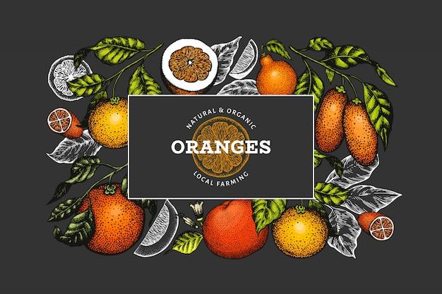 Citrusvruchten ontwerpsjabloon. vintage citrus banner.