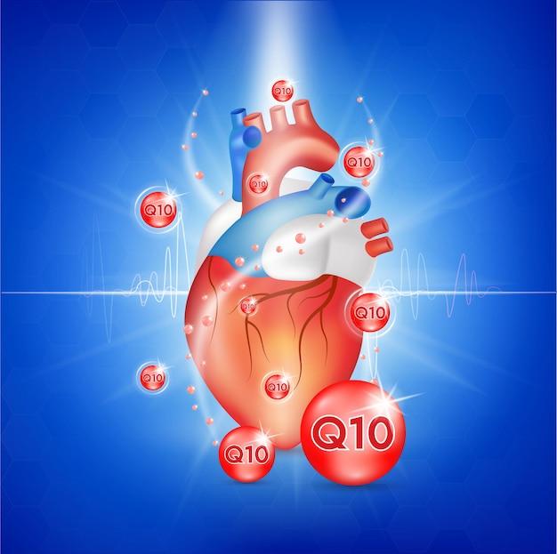 Co-enzym q10 en hart.