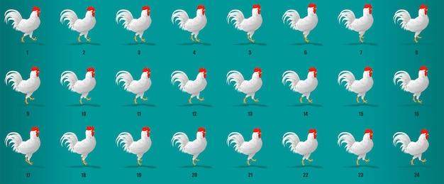 Cock walk cyclus animatie reeks vector