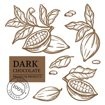 Cocoa-ontwerp. chocoladeproducten in vintage stijl. bruin zwart-wit hand getrokken schets illustraties illustratie set