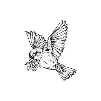 Colibri, kolibrie vliegend vogeldier
