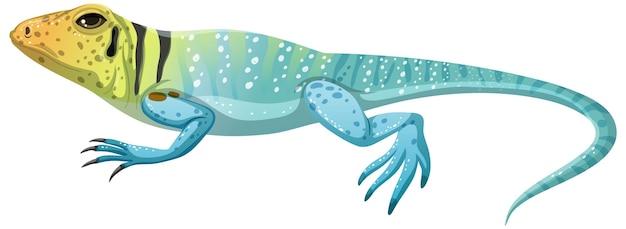 Collard lizard in cartoon stijl geïsoleerd op een witte achtergrond