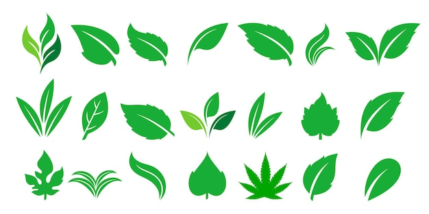 Collectie blad logosjabloon logo ontwerp vector