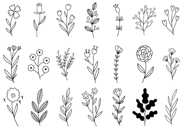 Collectie bosvaren eucalyptus kunst gebladerte natuurlijke bladeren kruiden in lijnstijl. decoratieve schoonheid elegante illustratie voor ontwerp hand getrokken bloem