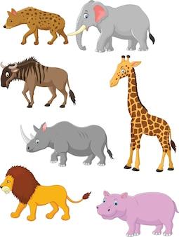 Collectie dier afrika