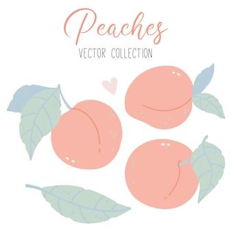 Collectie met perzikenbladeren en hart