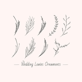 Collectie set hand getrokken minimalistische bloemen bladeren bruiloft decoratie ontwerp