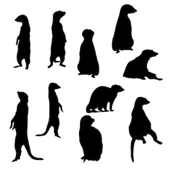 Collectie silhouetten van stokstaartjes in verschillende houdingen