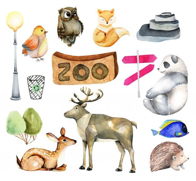 Collectie van aquarel dieren met elementen en kenmerken van de dierentuin