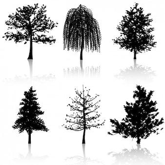 Collectie van boomsilhouetten