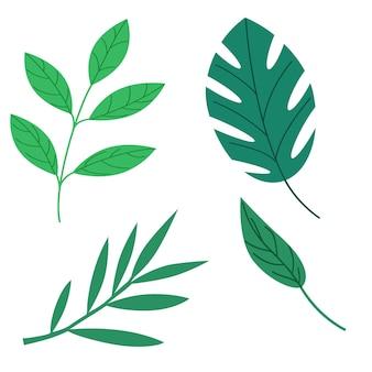 Collectie van groene bladeren. vector geïsoleerde elementen op een witte achtergrond in een vlakke stijl.