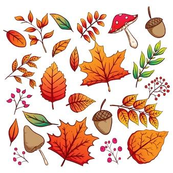 Collectie van herfstbladeren en eikels met kleurrijke handgetekende stijl