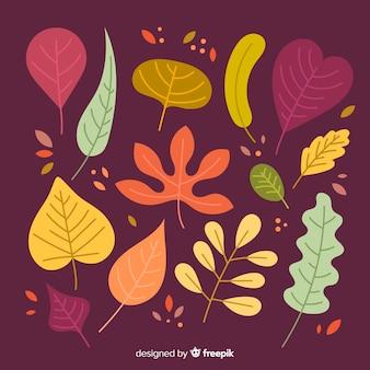 Collectie van herfstbladeren plat ontwerp