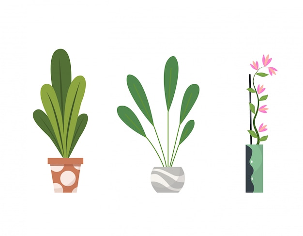 Collectie van kamerplanten binnenshuis in potten. woon decoratieve en bladverliezende planten in een vlakke stijl. geïsoleerde elementen op een witte achtergrond