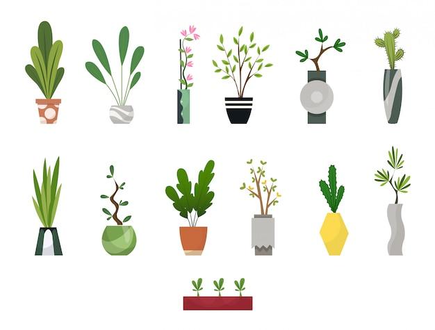 Collectie van kamerplanten binnenshuis in potten. woon decoratieve en bladverliezende planten in een vlakke stijl. set elementen voor ontwerp huis, kamer of kantoor