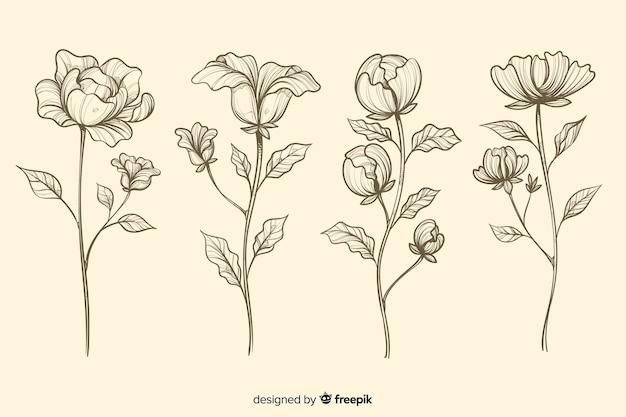 Collectie van realistische hand getrokken botanische bloemen