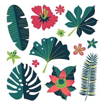 Collectie van tropische bloemen en bladeren