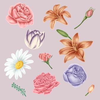 Collectie vintage bloemenelementen