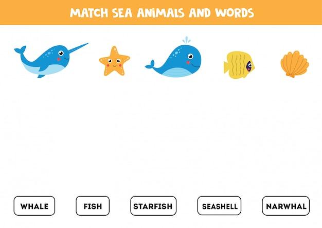 Combineer afbeeldingen van zeedieren met de woorden.