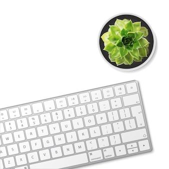 Computertoetsenbord en succulente bloem die op witte achtergrond wordt geïsoleerd.