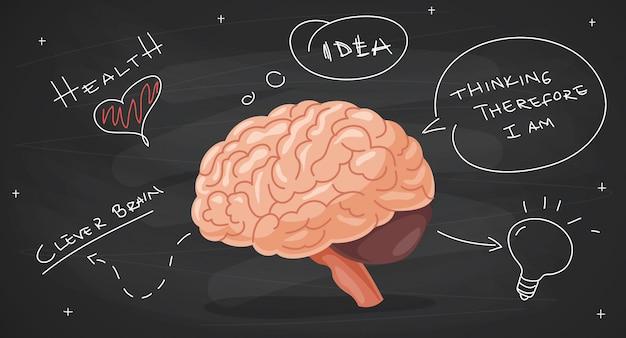 Concept van de hersenen anatomie en creativiteit