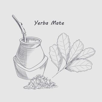 Concept yerba mate drankje. schets tekening