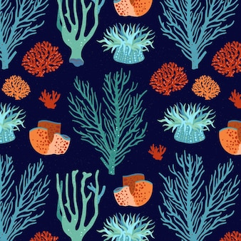 Coral patroon concept
