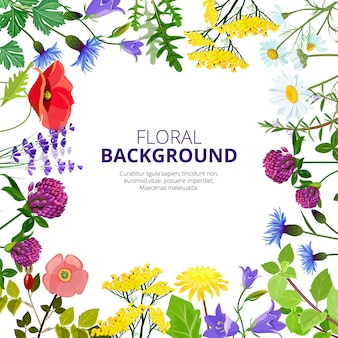 Cosmetica kruiden. gezondheid botanische bloemen en kruidenthee schoonheid geneeskunde honing producten blad foto's