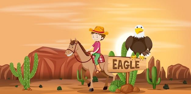 Cowboy in woestijnscène