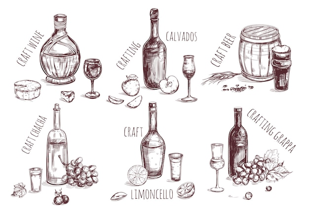 Craft drink sketch elements set