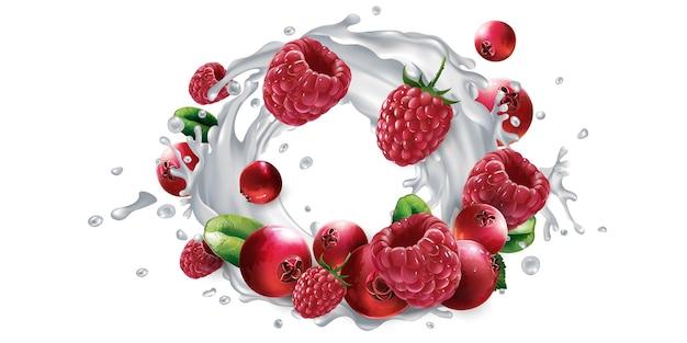 Cranberries en frambozen en een scheutje melk of yoghurt.