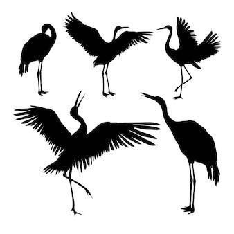 Crane silhouet