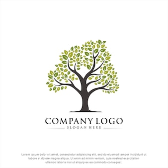 Creatief boom logo concept
