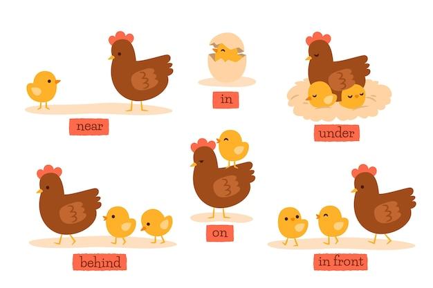 Creatieve manier om engels voorzetsel met kip te laten zien