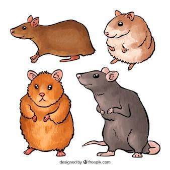 Creatieve muizen ingesteld