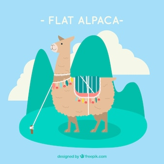 Creatieve platte alpaca achtergrond