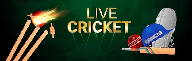 Cricket live concept banner of koptekst