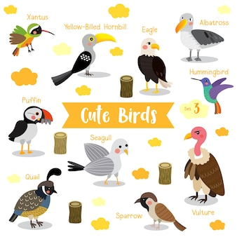 Cute bird animal cartoon met dierlijke namen