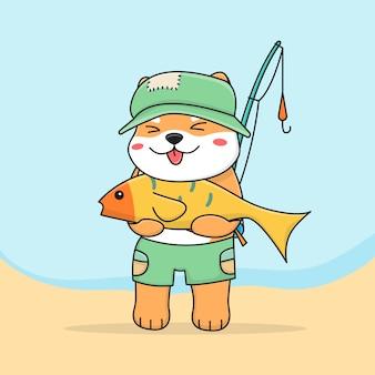 Cute shiba inu vissen