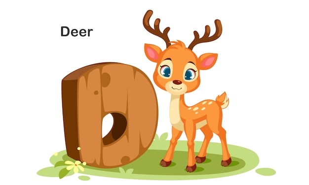 D voor deer