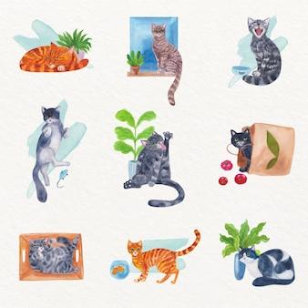Dagelijkse scènes met katten in aquarel