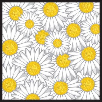 Daisy bloemenpatroon