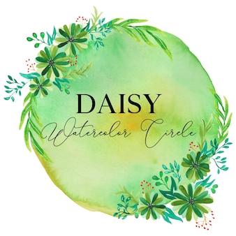 Daisy flower aquarel cirkel illustratie