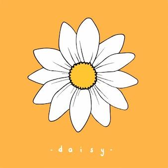 Daisy flowers symbool social media post floral vector illustration