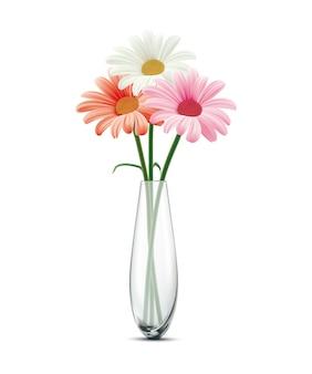 Daisy in een glazen vaas op een wit geïsoleerd op wit