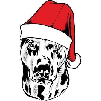 Dalmatische hond in kerstmuts voor kerstmis
