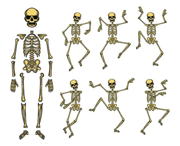 Dansende schedel